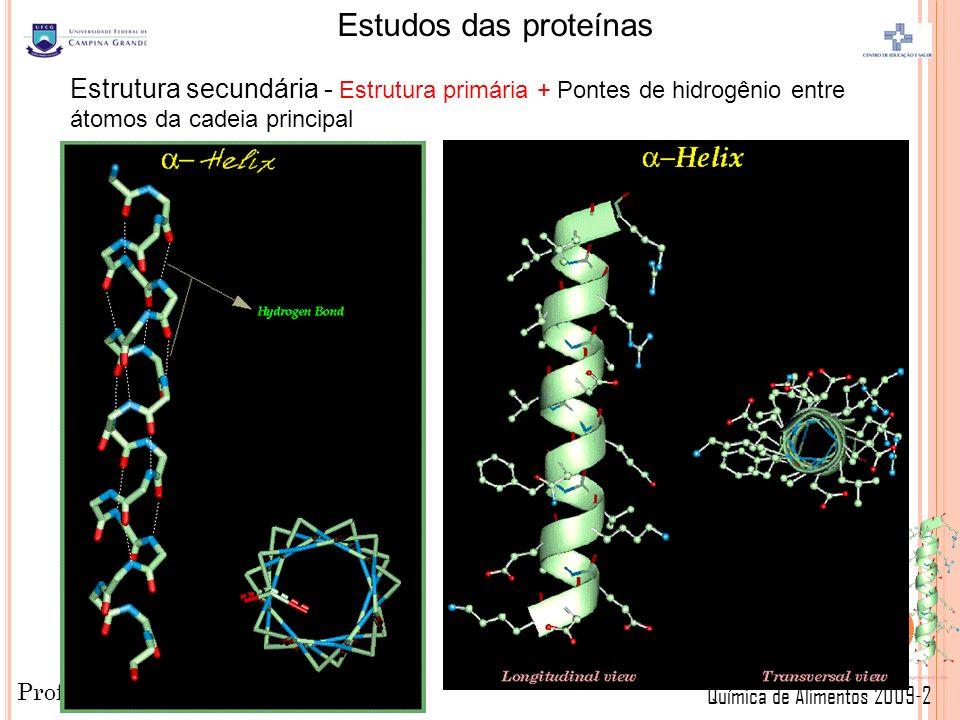 Professor: Paulo Sérgio Química de Alimentos 2009-2 Estudos das proteínas 21 Estrutura secundária - Estrutura primária + Pontes de hidrogênio entre átomos da cadeia principal