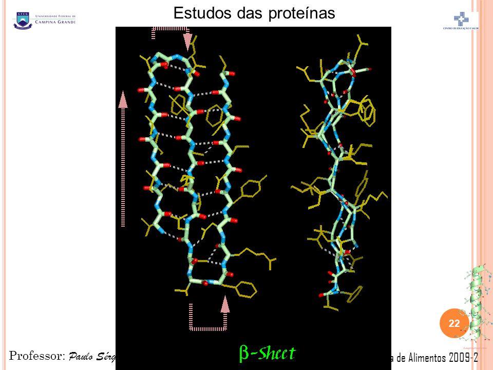 Professor: Paulo Sérgio Química de Alimentos 2009-2 Estudos das proteínas 22