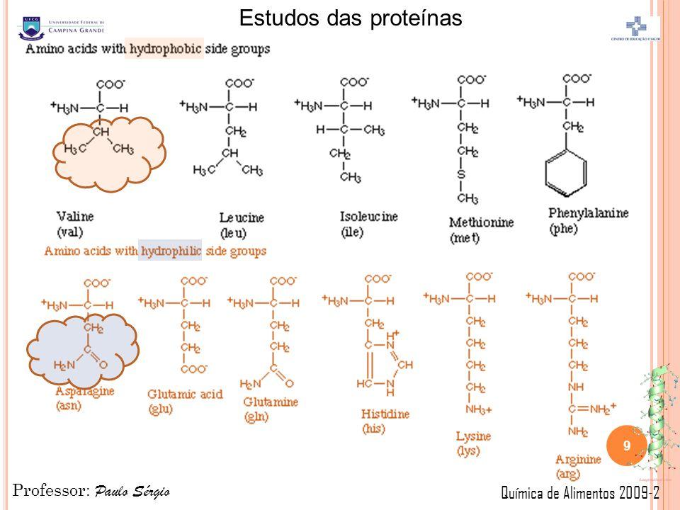Professor: Paulo Sérgio Química de Alimentos 2009-2 Estudos das proteínas 9