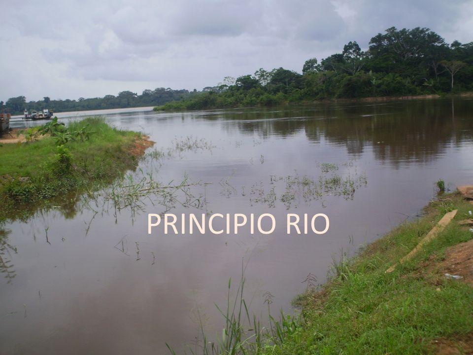 PRINCIPIO RIO
