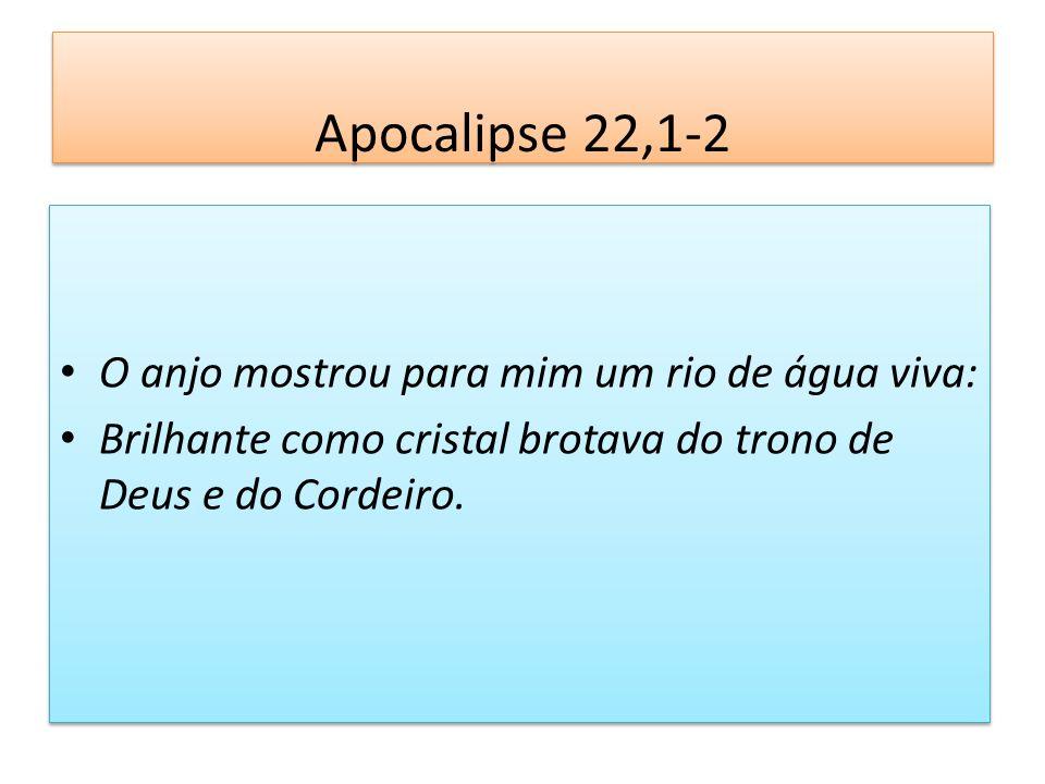Apocalipse 22,1-2 O anjo mostrou para mim um rio de água viva: Brilhante como cristal brotava do trono de Deus e do Cordeiro. O anjo mostrou para mim