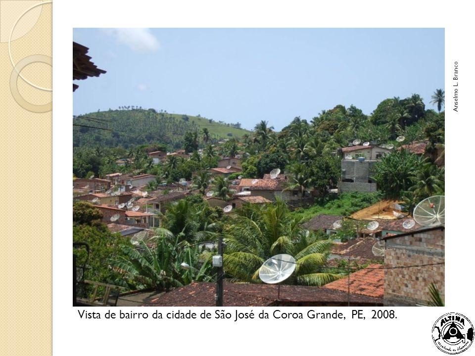 Casas na periferia de Caçador, SC, 2008 Anselmo Lazaro Branco