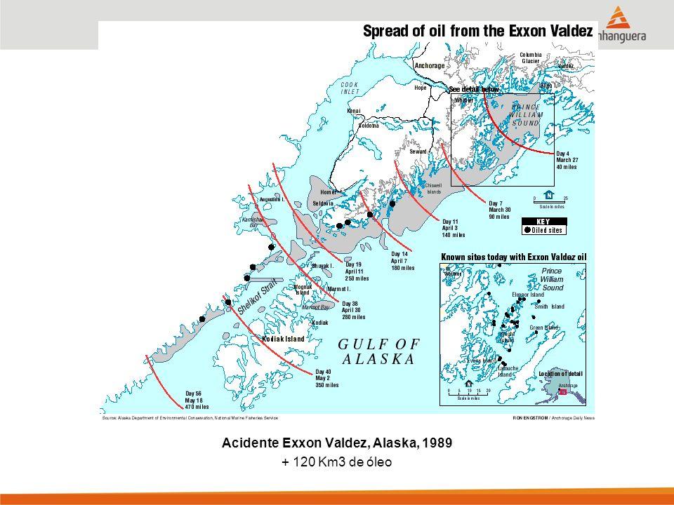 Acidente Exxon Valdez, Alaska, 1989 + 120 Km3 de óleo