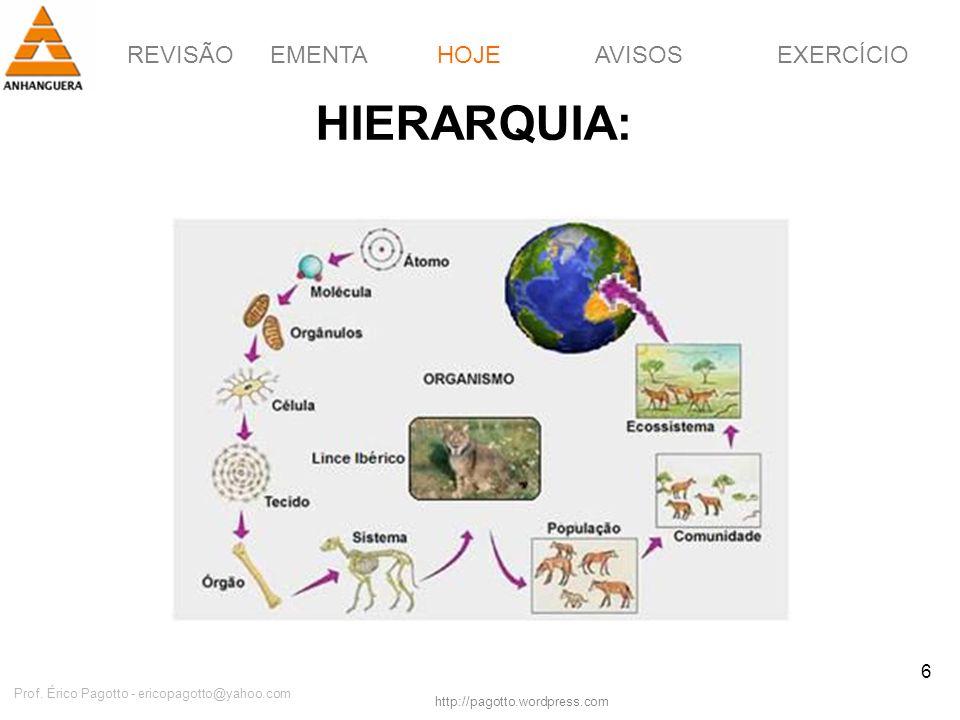 REVISÃOEMENTAHOJEEXERCÍCIOAVISOS http://pagotto.wordpress.com Prof. Érico Pagotto - ericopagotto@yahoo.com 6 HIERARQUIA: HOJE