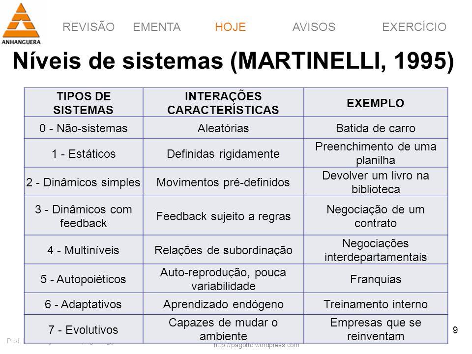 REVISÃOEMENTAHOJEEXERCÍCIOAVISOS http://pagotto.wordpress.com Prof. Érico Pagotto - ericopagotto@yahoo.com 9 Níveis de sistemas (MARTINELLI, 1995) HOJ