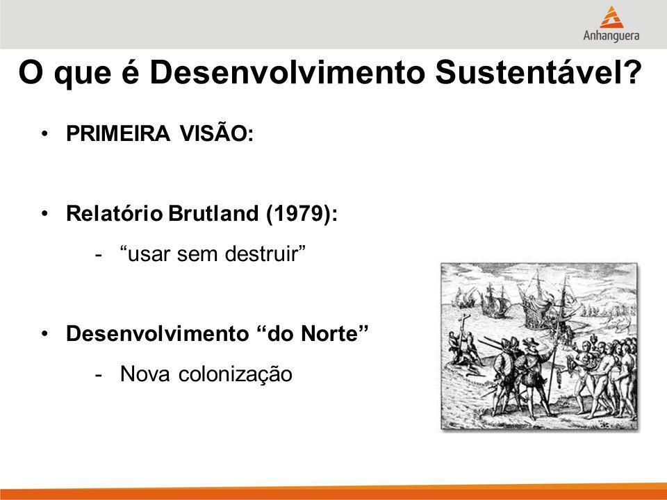 O que é Desenvolvimento Sustentável? PRIMEIRA VISÃO: