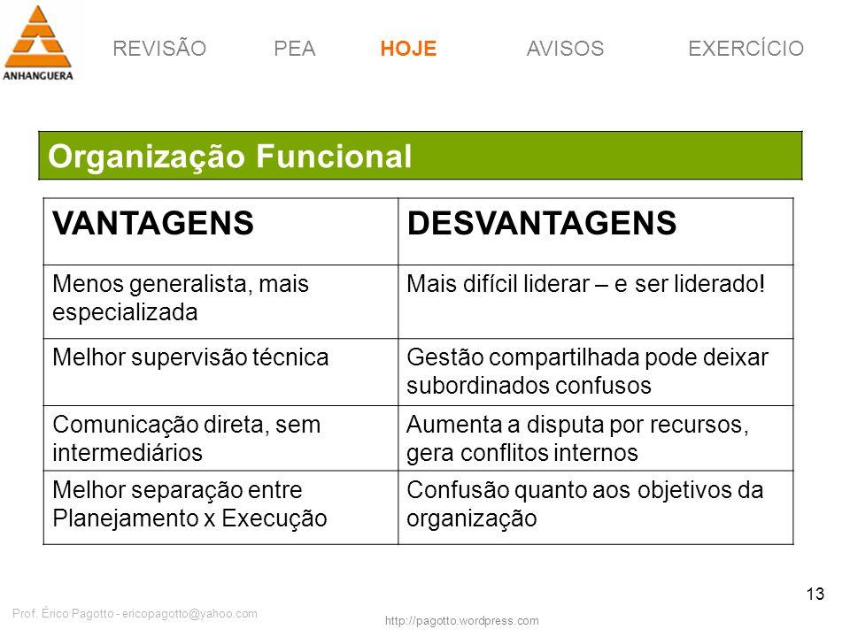REVISÃOPEAHOJEEXERCÍCIOAVISOS http://pagotto.wordpress.com Prof. Érico Pagotto - ericopagotto@yahoo.com 13 Organização Funcional HOJE VANTAGENSDESVANT