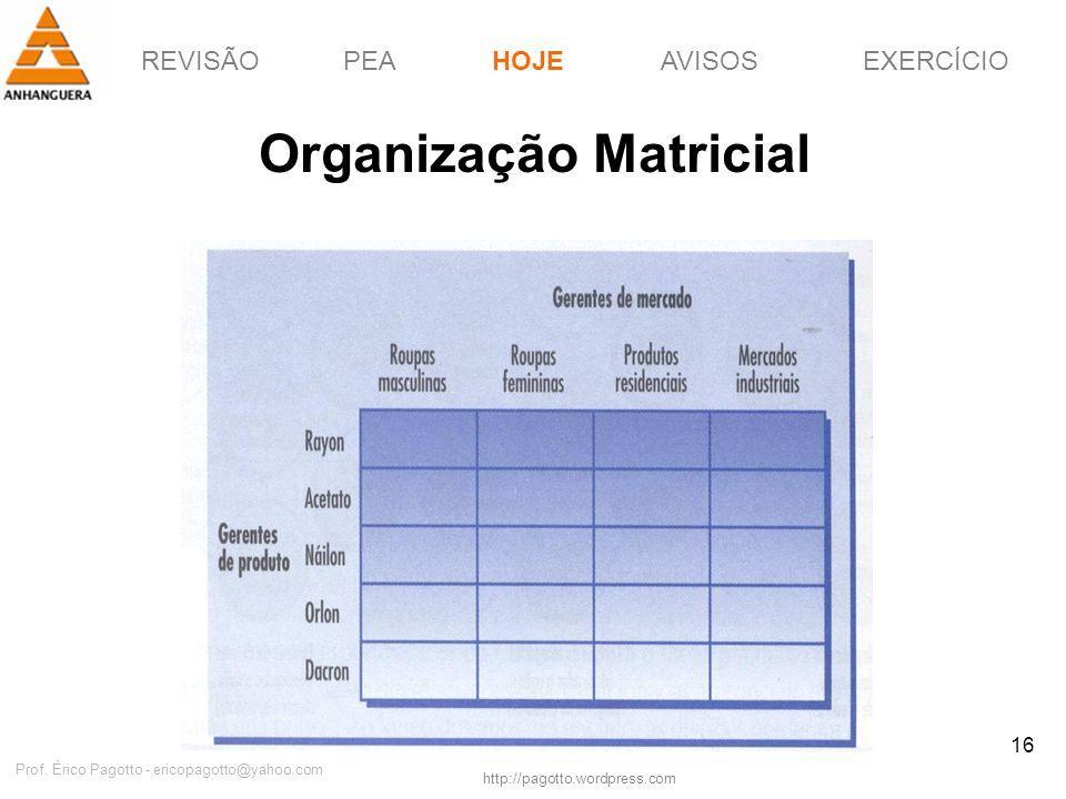 REVISÃOPEAHOJEEXERCÍCIOAVISOS http://pagotto.wordpress.com Prof. Érico Pagotto - ericopagotto@yahoo.com 16 Organização Matricial HOJE
