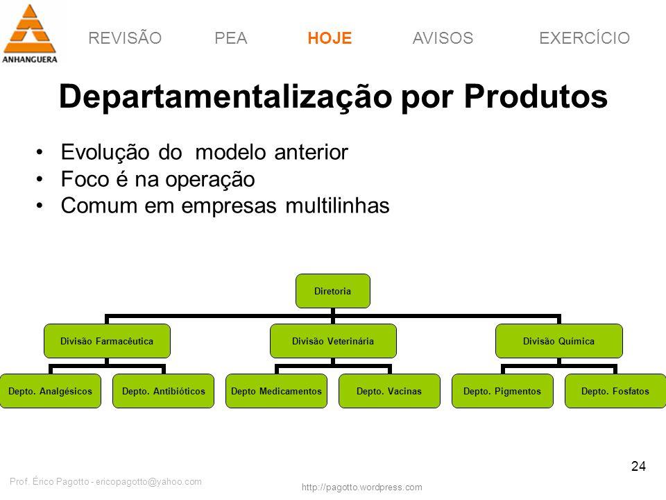 REVISÃOPEAHOJEEXERCÍCIOAVISOS http://pagotto.wordpress.com Prof. Érico Pagotto - ericopagotto@yahoo.com 24 Departamentalização por Produtos Evolução d