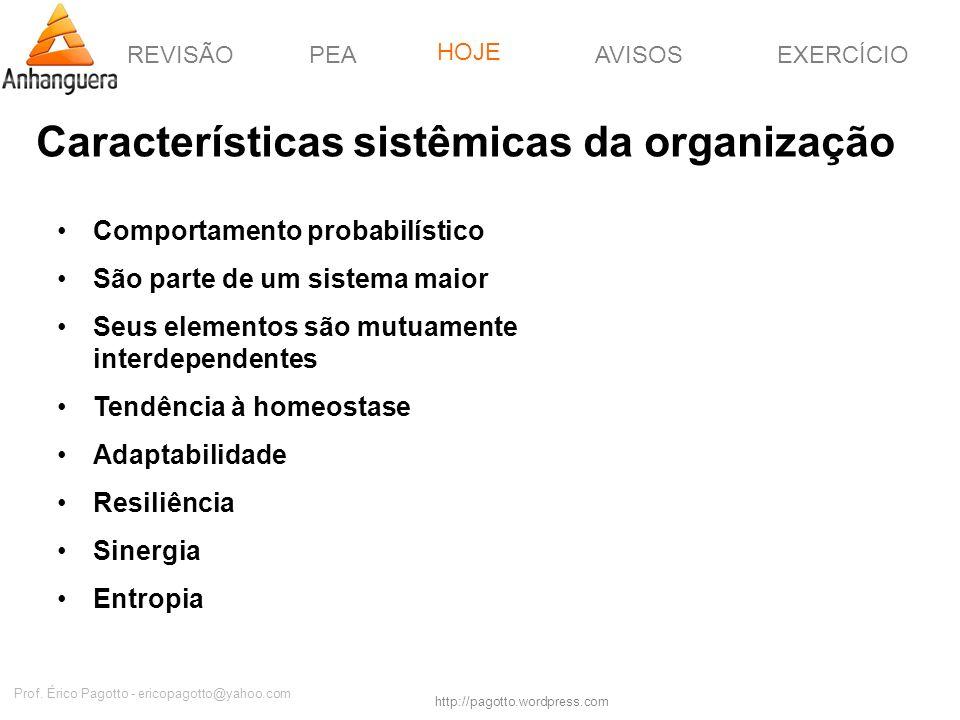 REVISÃOPEAHOJEEXERCÍCIOAVISOS http://pagotto.wordpress.com Prof. Érico Pagotto - ericopagotto@yahoo.com Características sistêmicas da organização Comp