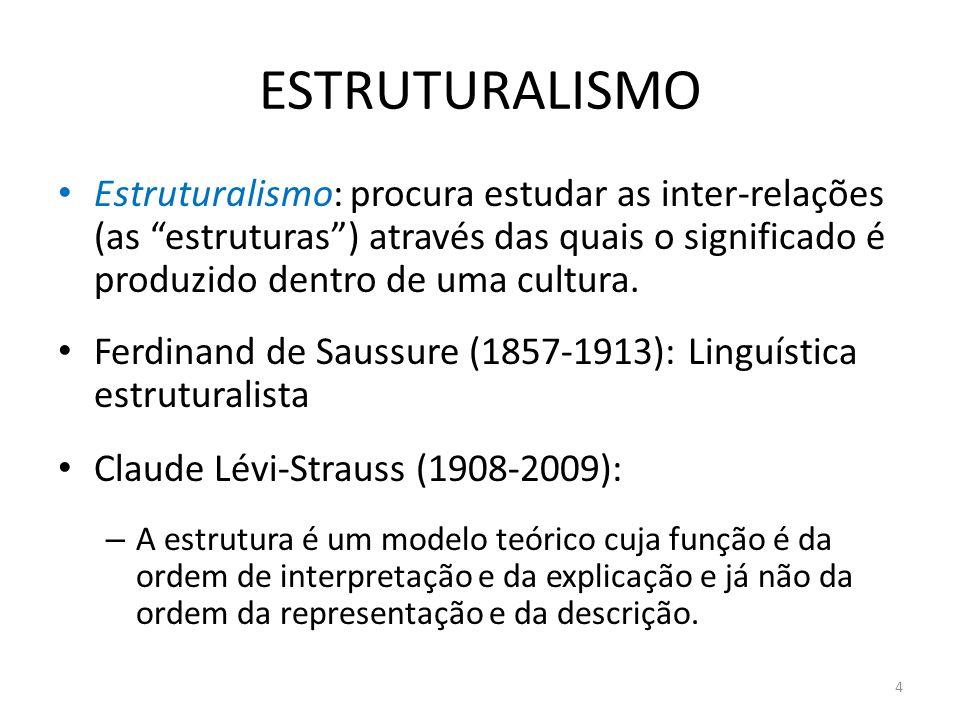 ESTRUTURALISMO Estruturalismo: procura estudar as inter-relações (as estruturas) através das quais o significado é produzido dentro de uma cultura. Fe