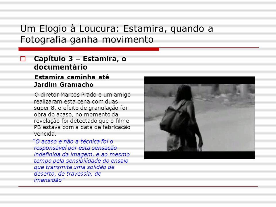 Um Elogio à Loucura: Estamira, quando a Fotografia ganha movimento Capítulo 3 – Estamira, o documentário Estamira caminha até Jardim Gramacho O direto