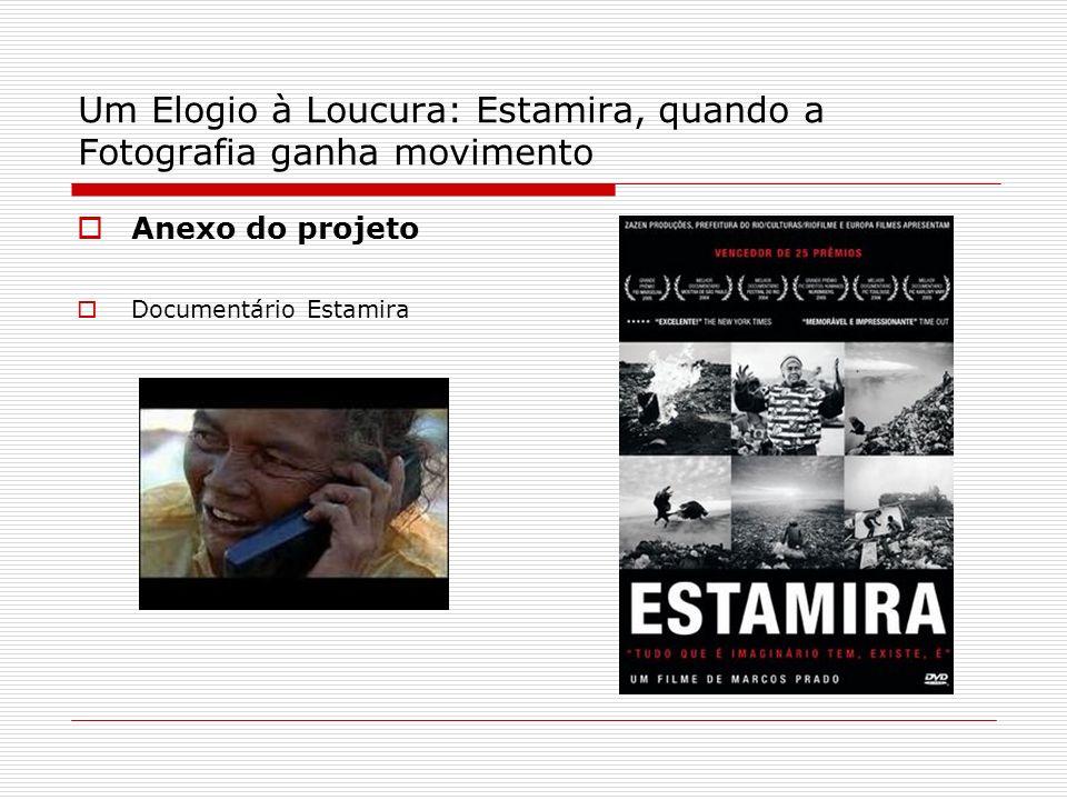 Um Elogio à Loucura: Estamira, quando a Fotografia ganha movimento Anexo do projeto Documentário Estamira