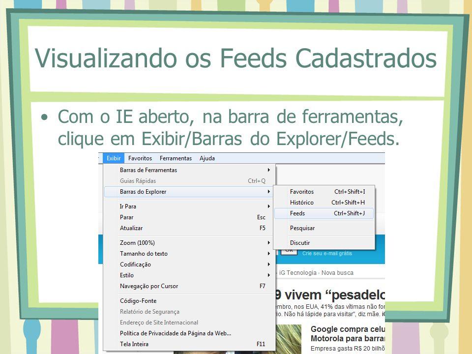 Visualizando os Feeds Cadastrados Com o IE aberto, na barra de ferramentas, clique em Exibir/Barras do Explorer/Feeds.