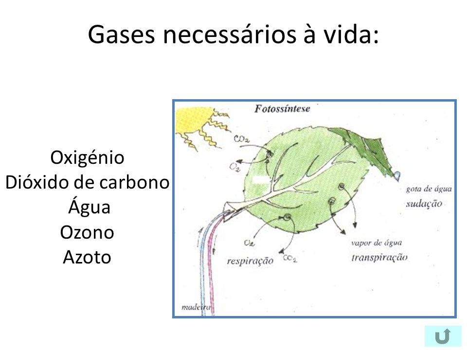 Gases necessários à vida: Oxigénio Dióxido de carbono Água Ozono Azoto