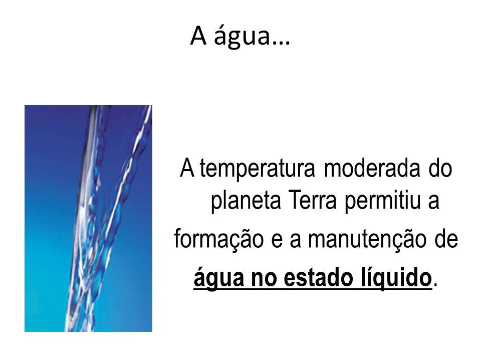 A água… A temperatura moderada do planeta Terra permitiu a formação e a manutenção de água no estado líquido.