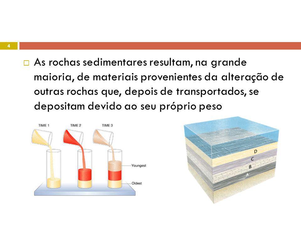 Nuno Correia 08-09 15
