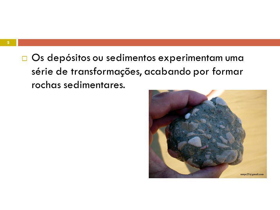 Nuno Correia 08-09 16