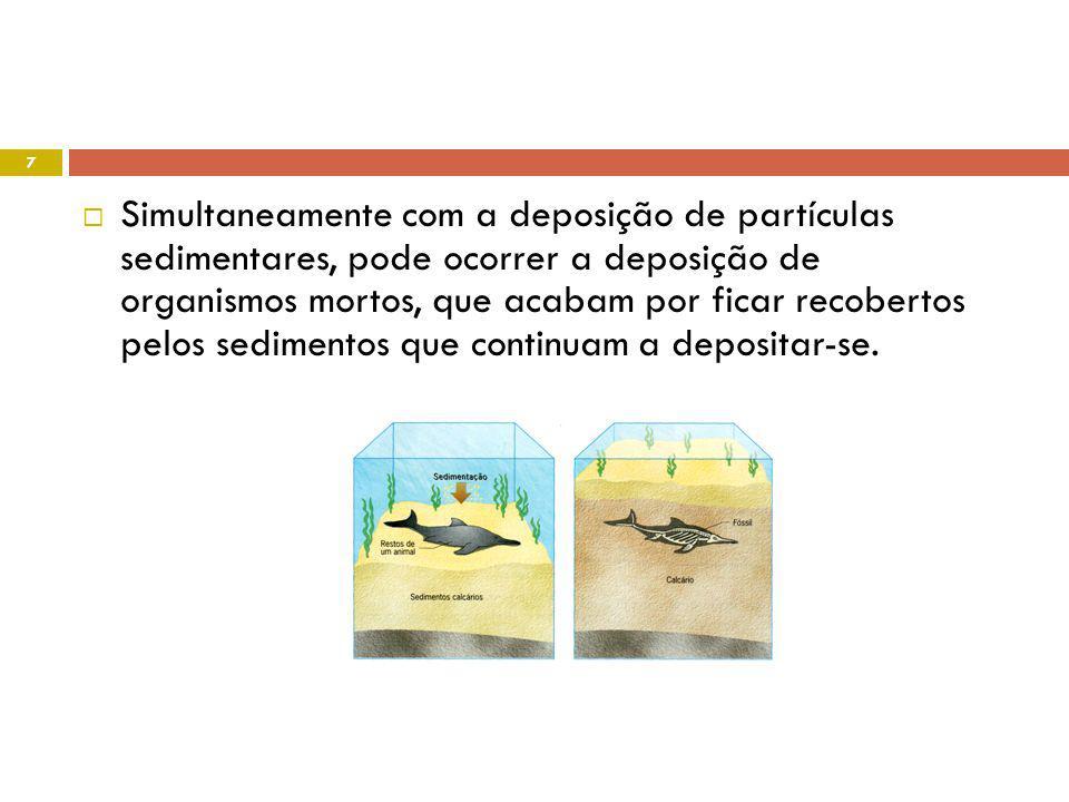 Princípio da intersecção qualquer estrutura geológica que corte outra é de formação posterior. 18
