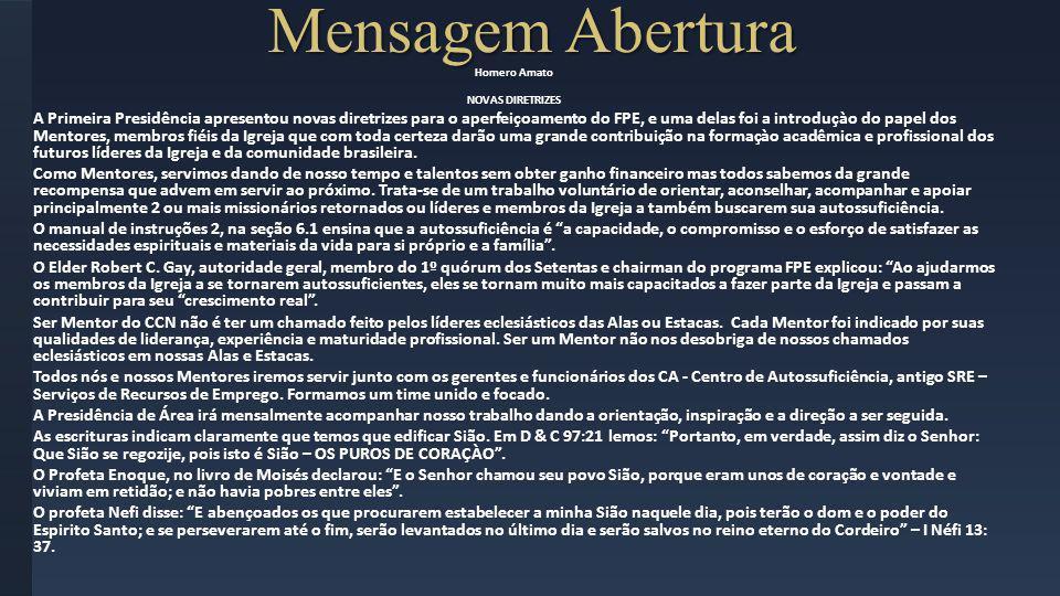 Modelo Operação (1/3) Rio Janeiro Cada mentor acompanhará individualmente os membros sobre sua designação.