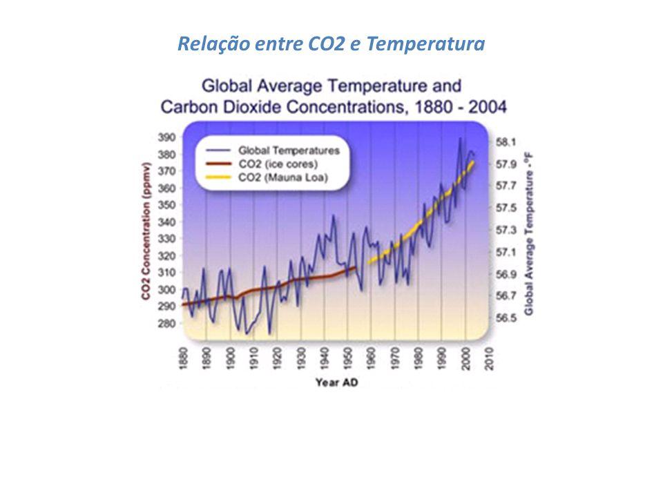 Estimativas da NASA e do National Climatic Data Center indicam que o ano de 2005 foi o mais quente já registrado, um centésimo de grau mais quente que 1998.