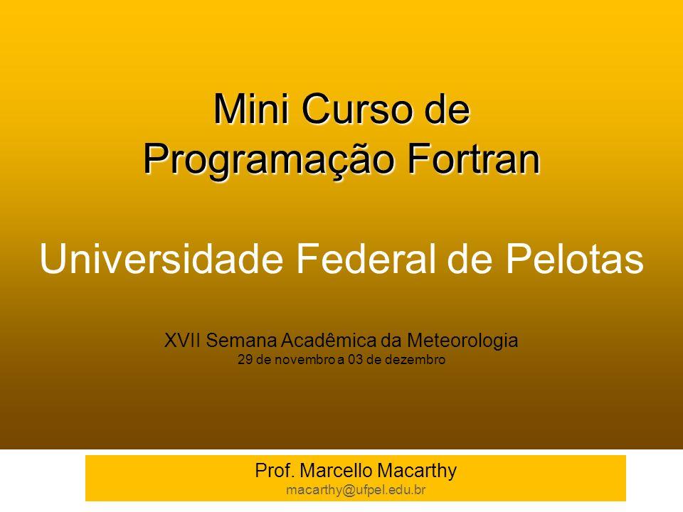 Mini Curso de Programação Fortran Mini Curso de Programação Fortran Universidade Federal de Pelotas XVII Semana Acadêmica da Meteorologia 29 de novemb