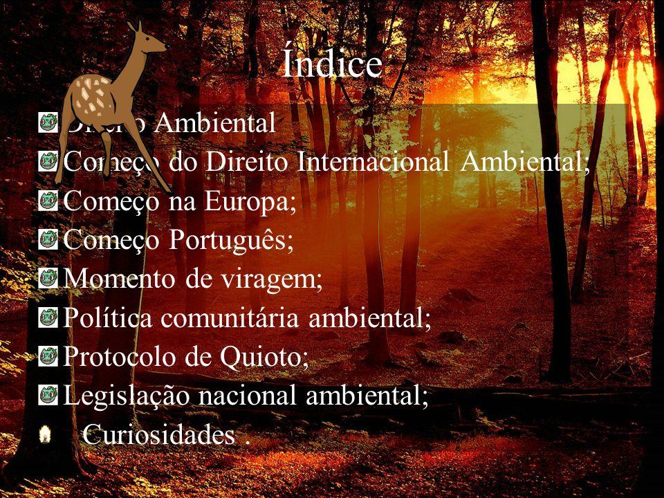 Índice Direito Ambiental Começo do Direito Internacional Ambiental; Começo na Europa; Começo Português; Momento de viragem; Política comunitária ambie