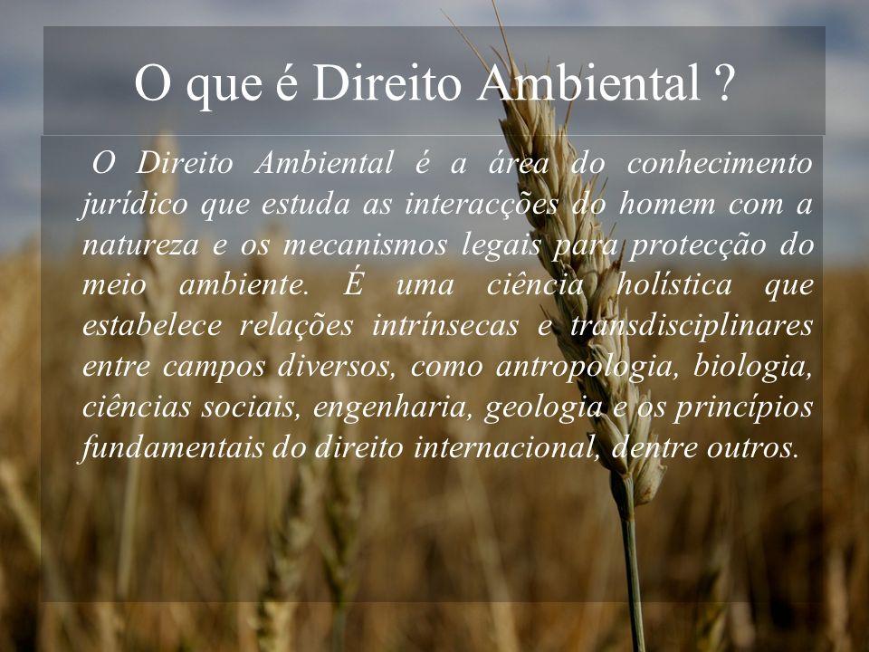 O que é Direito Ambiental ? O Direito Ambiental é a área do conhecimento jurídico que estuda as interacções do homem com a natureza e os mecanismos le