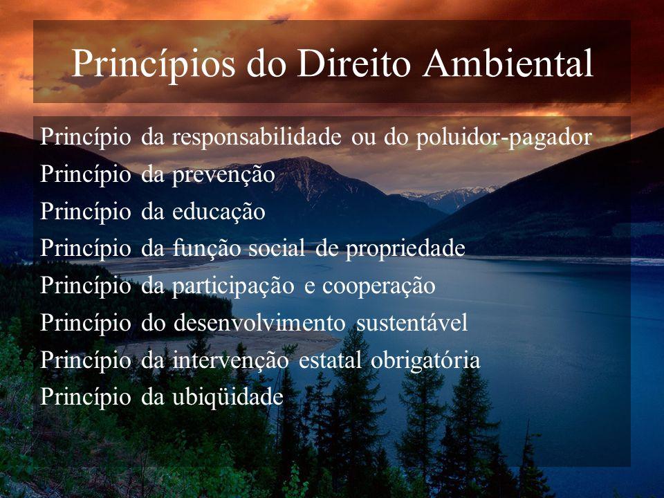 Princípios do Direito Ambiental Princípio da responsabilidade ou do poluidor-pagador Princípio da prevenção Princípio da educação Princípio da função