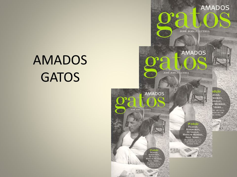Resumo do texto Casanova, Alma de Gato Casanova passou 13 anos a trabalhar como bibliotecário, no Castelo de Dux.