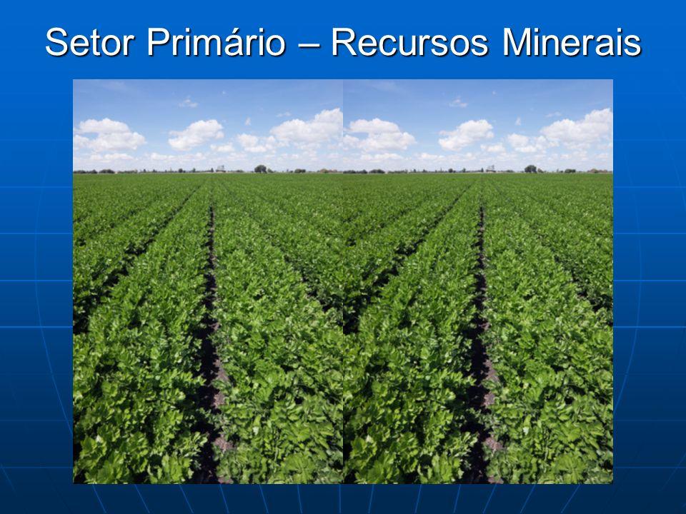 Setor Primário – Recursos Minerais
