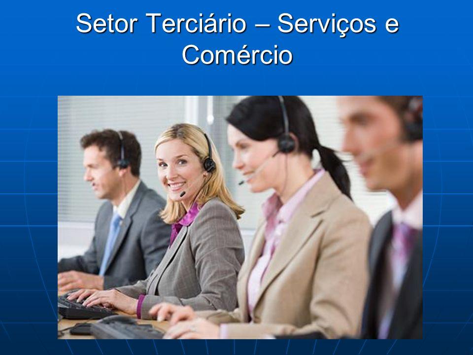 Setor Terciário – Serviços e Comércio