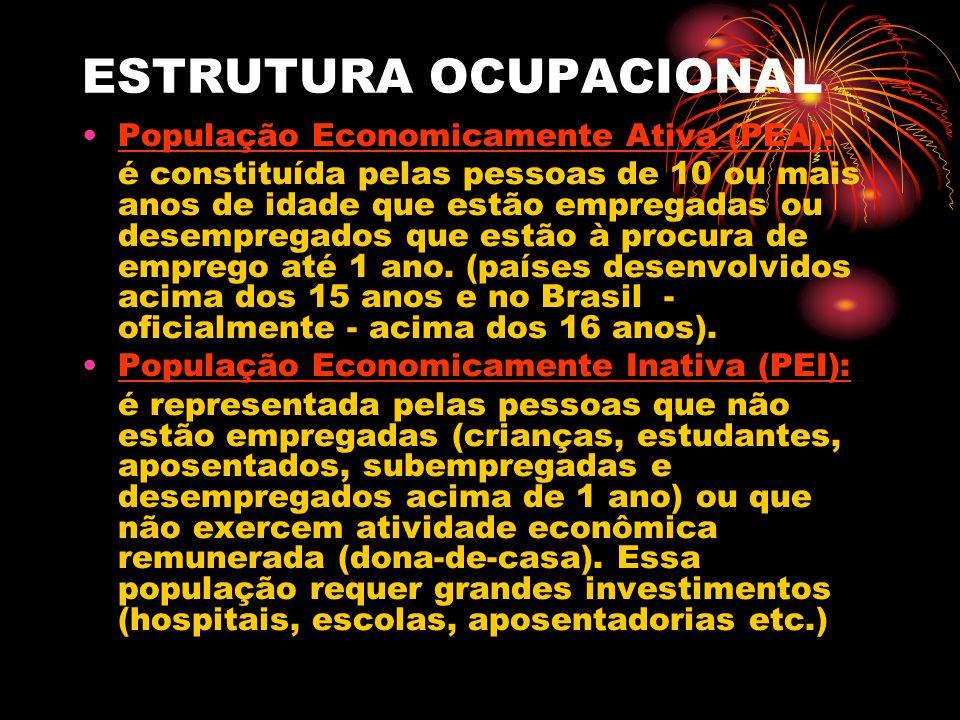 ESTRUTURA OCUPACIONAL População Economicamente Ativa (PEA): é constituída pelas pessoas de 10 ou mais anos de idade que estão empregadas ou desempregados que estão à procura de emprego até 1 ano.