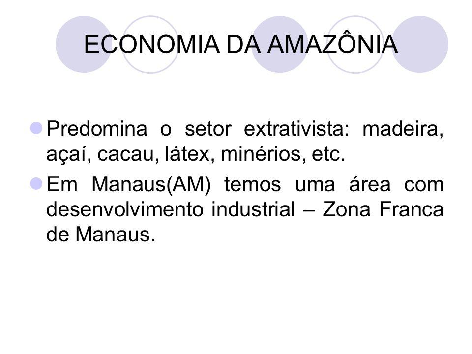 ECONOMIA DA AMAZÔNIA Predomina o setor extrativista: madeira, açaí, cacau, látex, minérios, etc.