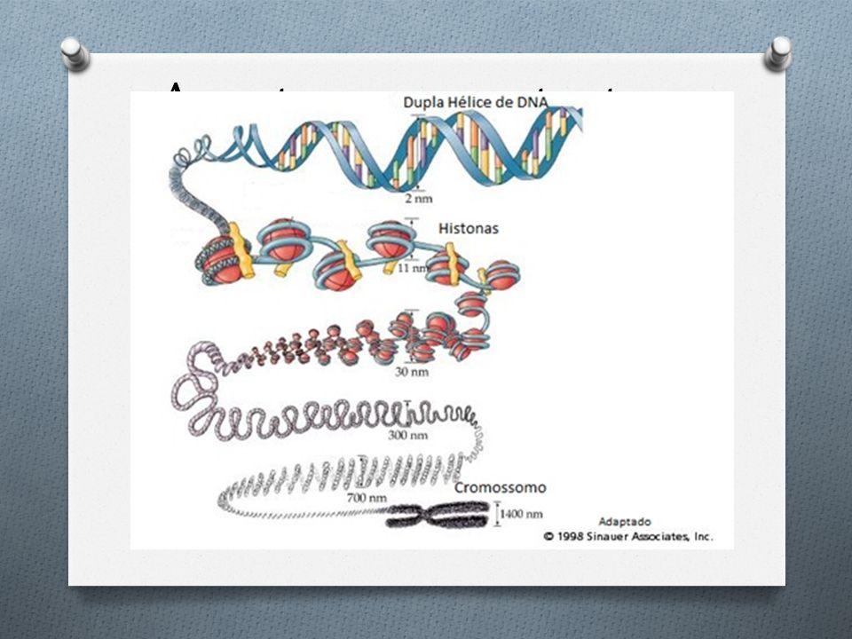 Acontecem na estrutura física do cromossomo