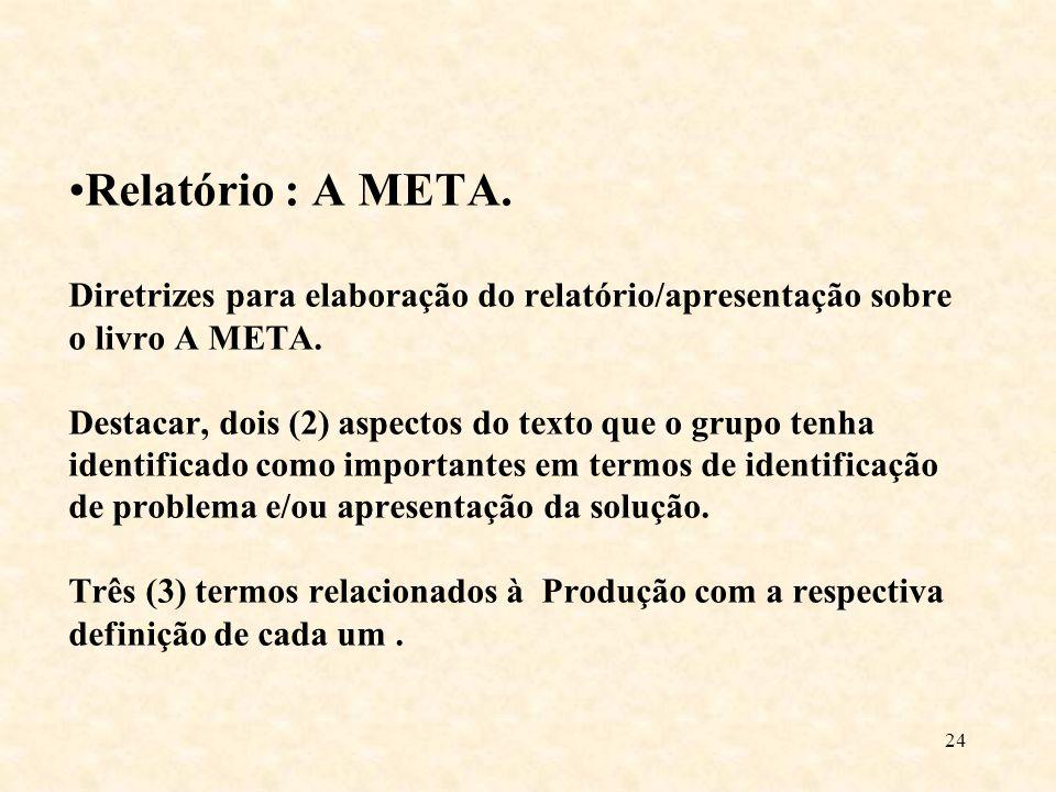 Relatório : A META. Diretrizes para elaboração do relatório/apresentação sobre o livro A META. Destacar, dois (2) aspectos do texto que o grupo tenha