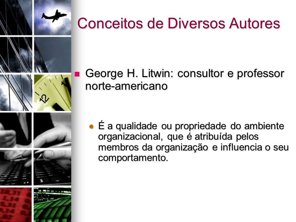 Conceitos de Diversos Autores George H. Litwin: consultor e professor norte-americano George H. Litwin: consultor e professor norte-americano É a qual