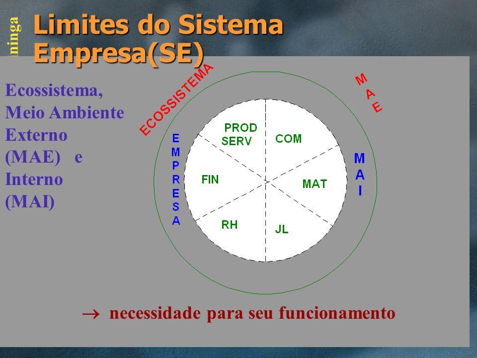 FATEC - Itapetininga Funções Empresariais X Níveis PE PROD / SERV MAT / LOG COM / MKT FINRHJL E T O