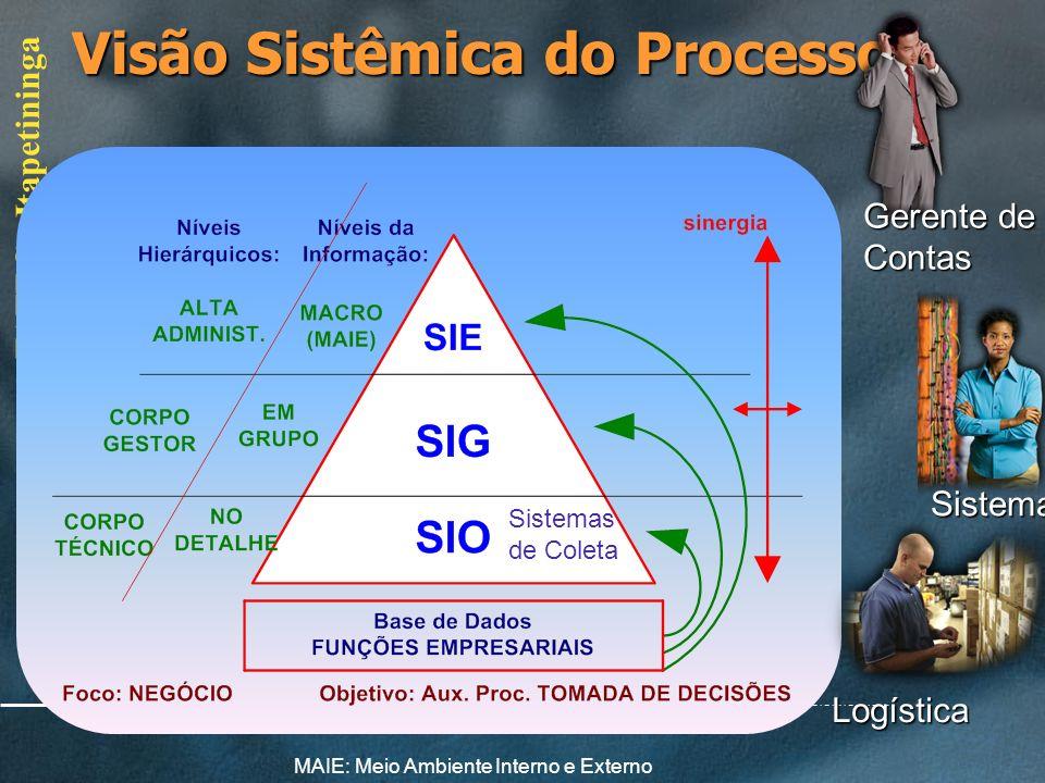 FATEC - Itapetininga Limites do Sistema Empresa(SE) Ecossistema, Meio Ambiente Externo (MAE) e Interno (MAI) necessidade para seu funcionamento