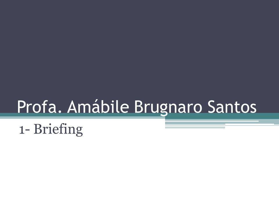 Profa. Amábile Brugnaro Santos 1- Briefing