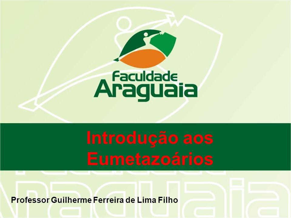 Professor Guilherme Ferreira de Lima Filho Introdução aos Eumetazoários