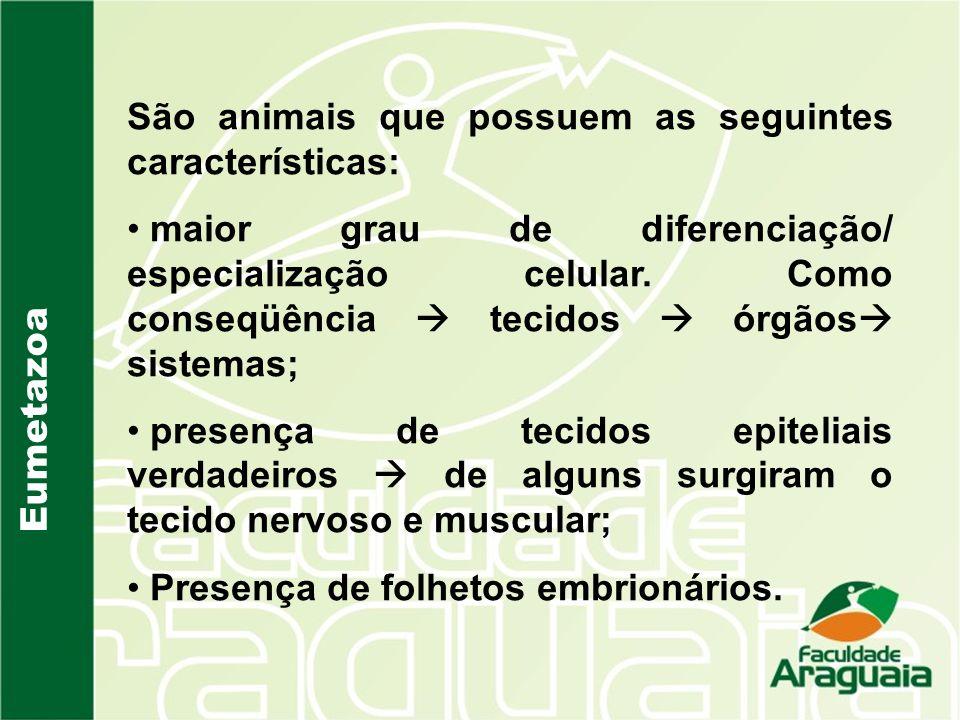 Eumetazoa São animais que possuem as seguintes características: maior grau de diferenciação/ especialização celular. Como conseqüência tecidos órgãos