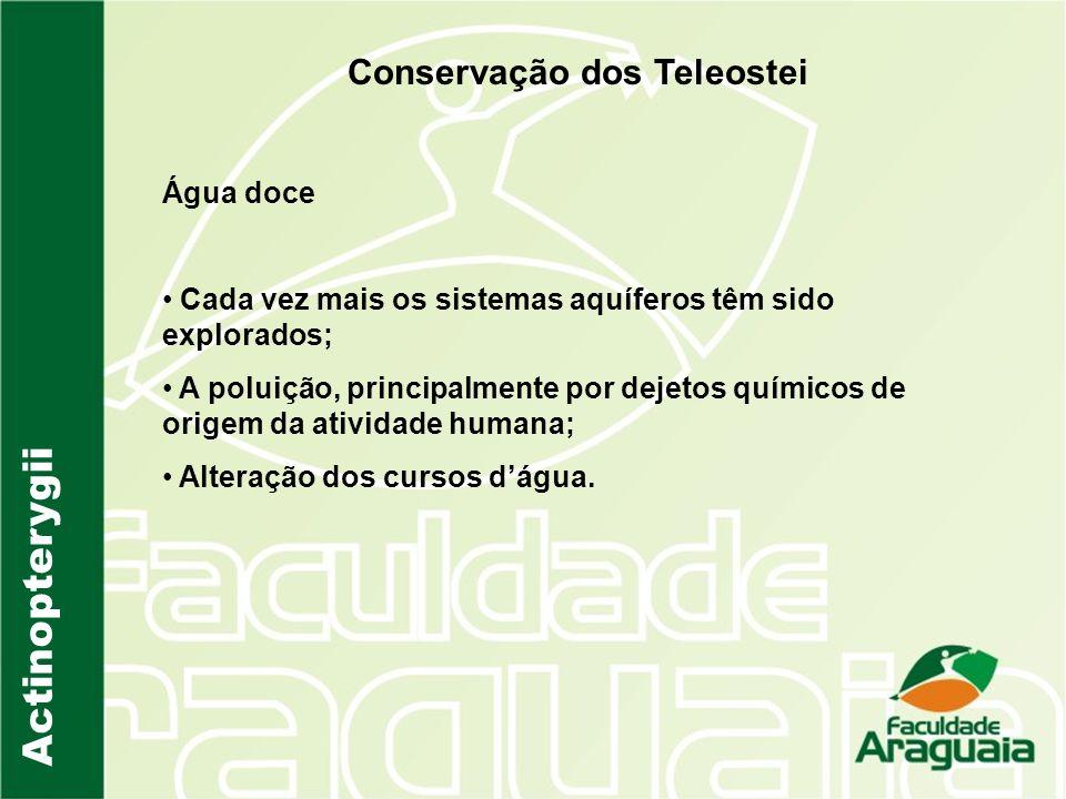 Actinopterygii Conservação dos Teleostei Água doce Cada vez mais os sistemas aquíferos têm sido explorados; A poluição, principalmente por dejetos quí