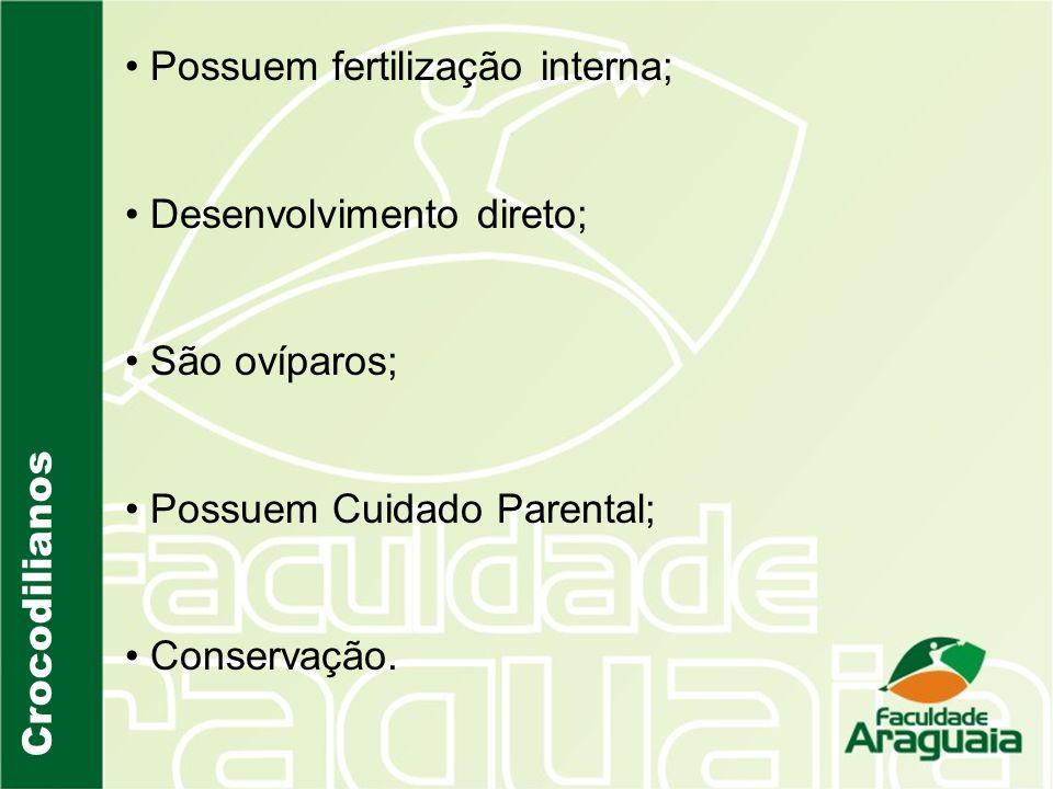 Possuem fertilização interna; Desenvolvimento direto; São ovíparos; Possuem Cuidado Parental; Conservação.