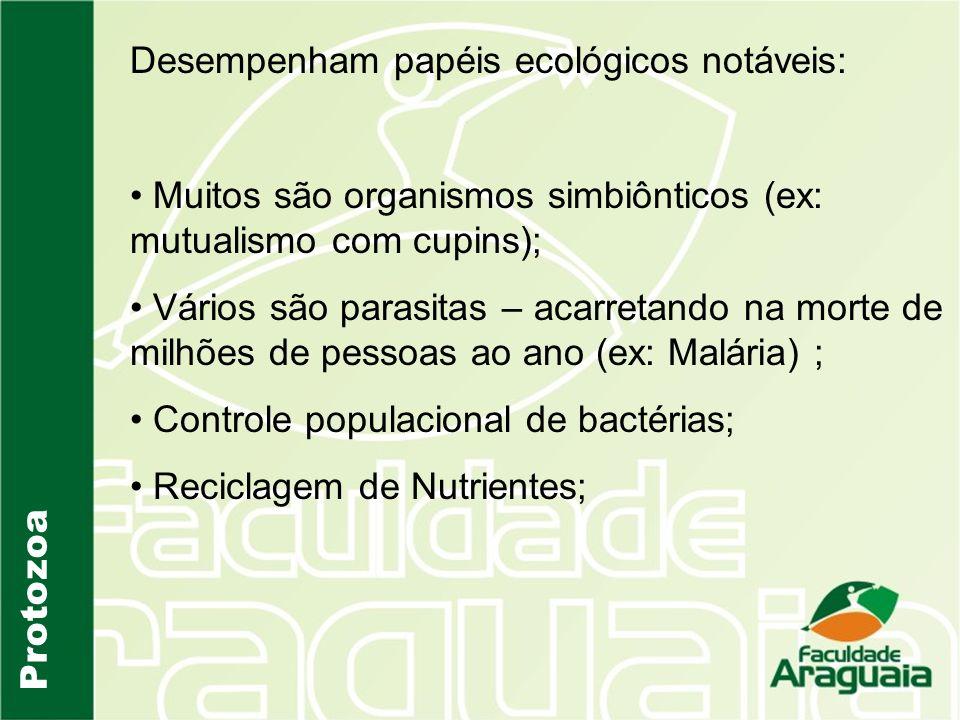 Desempenham papéis ecológicos notáveis: Muitos são organismos simbiônticos (ex: mutualismo com cupins); Vários são parasitas – acarretando na morte de