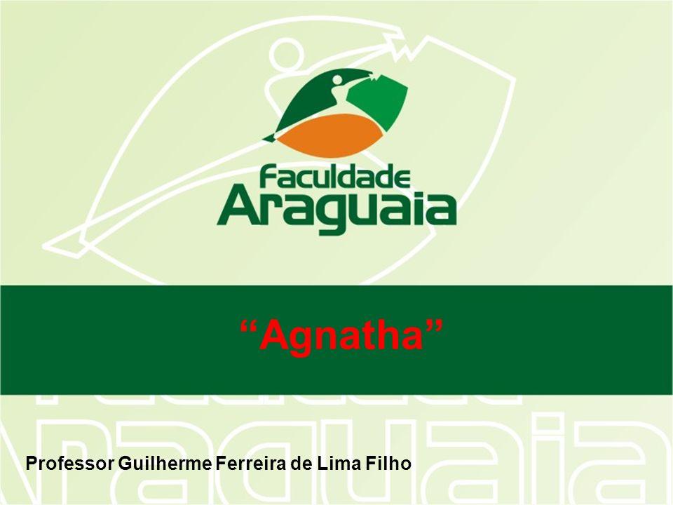 Agnatha Olfato, audição e paladar apurados; Dióicos; Fertilização externa; Desenvolvimento indireto (larva amocete).