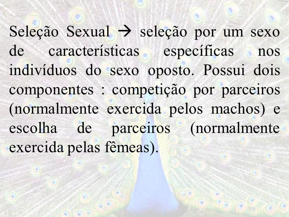 Seleção Sexual seleção por um sexo de características específicas nos indivíduos do sexo oposto. Possui dois componentes : competição por parceiros (n