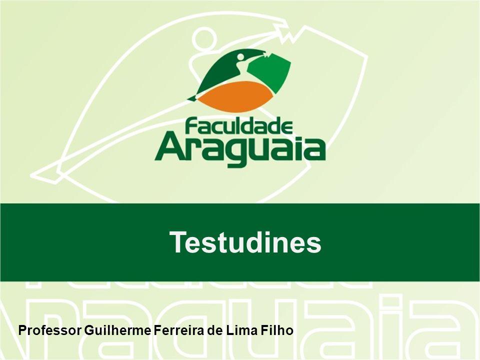 Professor Guilherme Ferreira de Lima Filho Testudines