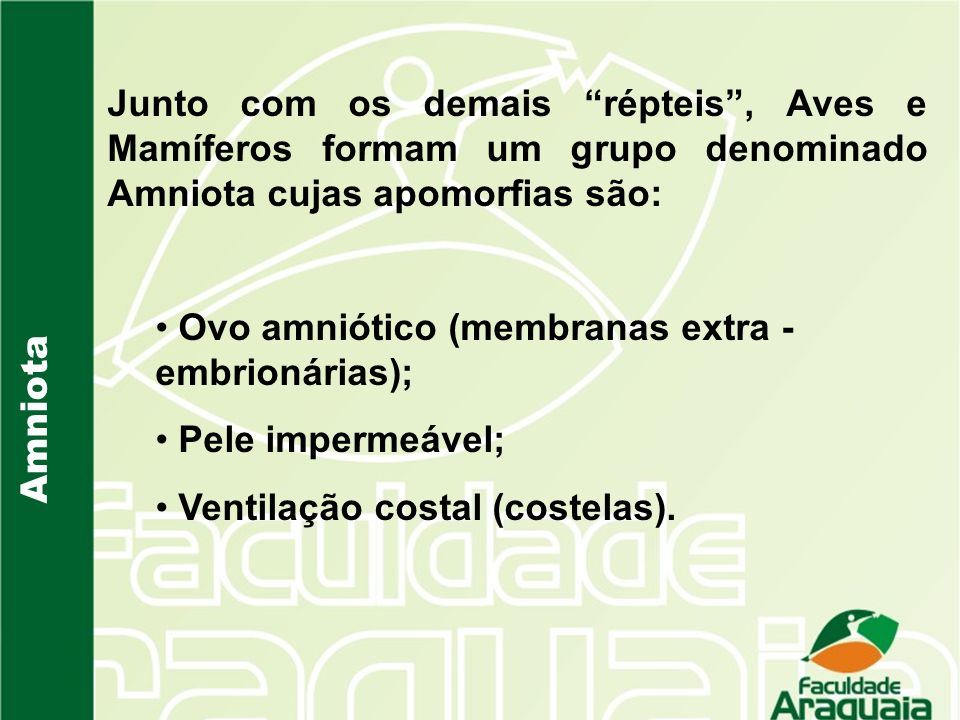 Amniota Junto com os demais répteis, Aves e Mamíferos formam um grupo denominado Amniota cujas apomorfias são: Ovo amniótico (membranas extra - embrio