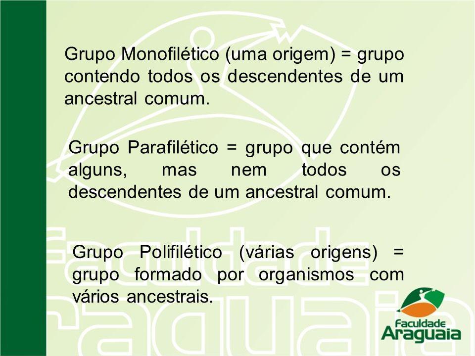 Grupo Monofilético (uma origem) = grupo contendo todos os descendentes de um ancestral comum. Grupo Parafilético = grupo que contém alguns, mas nem to